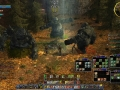 The_Lord_of_the_Rings_Online_Screenshot_3